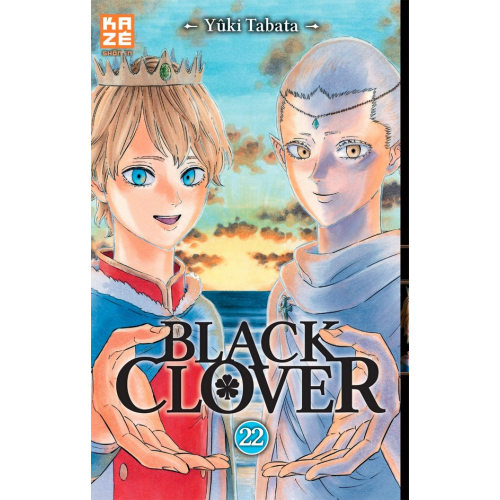 Black Clover Tome 22 (VF)
