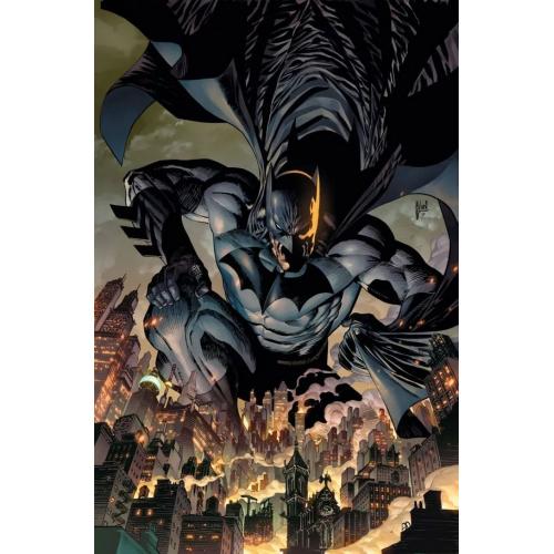 BATMAN 101 (VO)