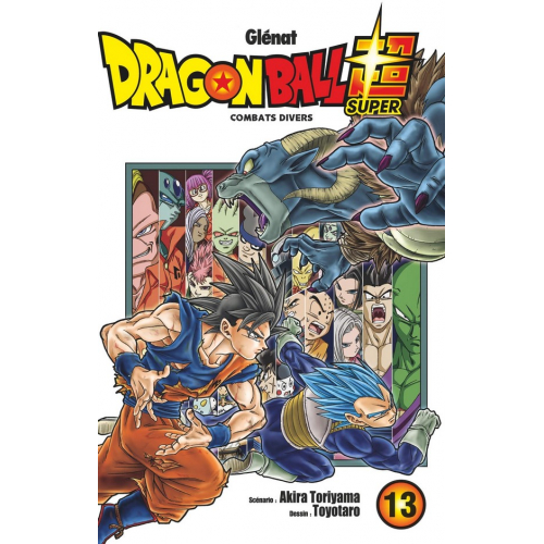 Dragon Ball Super Tome 13 (VF)