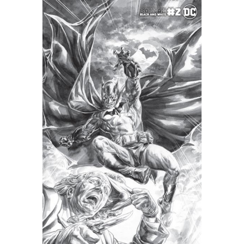 BATMAN BLACK AND WHITE 2 (OF 6) CVR B DOUG BRAITHWAITE VAR(VO)