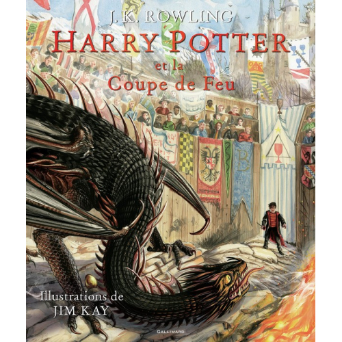 Harry Potter IV : Harry Potter et la Coupe de Feu Livre Illustré (VF)