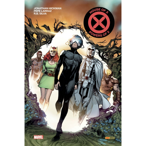 ABSOLUTE HOUSE OF X / POWERS OF X (VF)